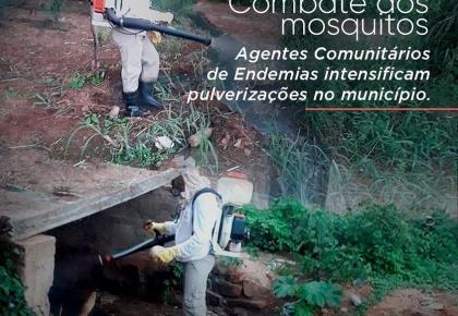 Ações de combate aos mosquitos